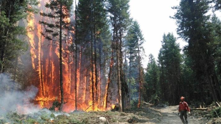 b-c-wildfire-2017.jpg